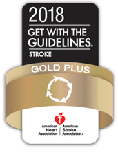 Gold Plus 2018 logo